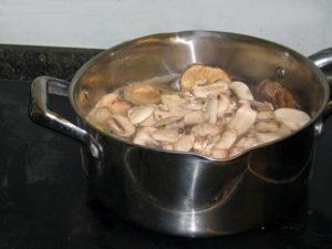pot-o-mushrooms-before
